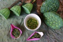 Цветок лотоса собрания, семя, чай, здоровая еда Стоковые Изображения RF