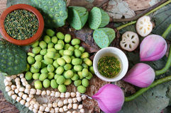 Цветок лотоса собрания, семя, чай, здоровая еда Стоковая Фотография
