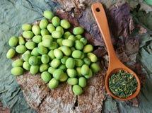 Цветок лотоса собрания, семя, чай, здоровая еда Стоковое Изображение RF