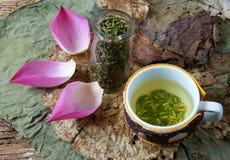 Цветок лотоса собрания, семя, чай, здоровая еда Стоковые Фото