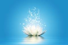 Цветок лотоса иллюстрация вектора