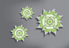 Цветок лотоса иллюстрация штока