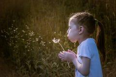 Цветок одуванчика красивого ребенка дуя отсутствующий весной Стоковая Фотография RF