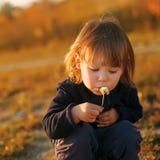 Цветок одуванчика красивого ребенка дуя отсутствующий Стоковые Изображения RF