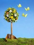 цветок пасхи расположения Стоковые Фото