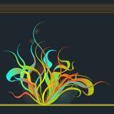 цветок пожара Стоковое Изображение