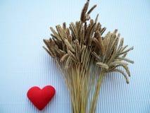 Цветок показа травы и знака слышит Стоковые Изображения