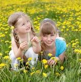 цветок поля детей Стоковые Фото