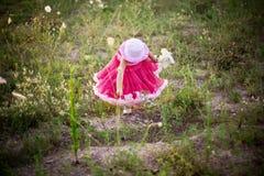 цветок поля ребенка стоковые изображения