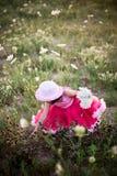 цветок поля ребенка стоковые фотографии rf