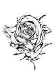 Цветок поднял иллюстрация штока