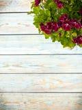 Цветок предпосылки весны свежий на голубой предпосылке Стоковое Изображение RF