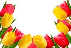 цветок предпосылки цветастый Стоковая Фотография