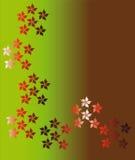 цветок предпосылки Стоковое Изображение RF