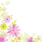 цветок предпосылки Стоковые Изображения