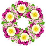 цветок предпосылки свежий Стоковые Изображения