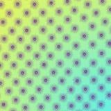 Цветок рамки Стоковые Изображения
