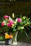 цветок расположения Стоковое Изображение RF