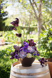 цветок расположения Стоковые Фотографии RF