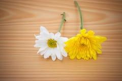 Цветок расположения на деревянной предпосылке Стоковые Изображения RF