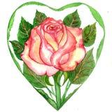 Цветок розовых leaveas акварели красных, желтых и зеленых Стоковая Фотография RF