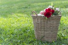 Цветок роз в корзине Стоковые Фотографии RF
