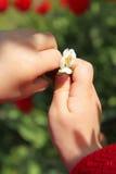 Цветок рук Стоковое Фото