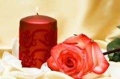 цветок свечки Стоковые Изображения