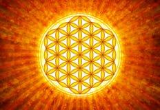 Цветок символа в реальном маштабе времени - священной геометрии иллюстрация вектора