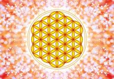 Цветок символа в реальном маштабе времени - священной геометрии бесплатная иллюстрация