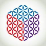 Цветок символа жизни Стоковое Изображение