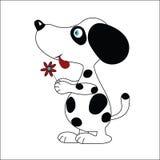 цветок собаки Стоковая Фотография