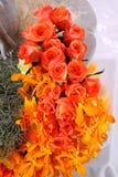 цветок собрания Стоковая Фотография RF