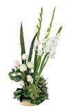 цветок состава Стоковое Изображение