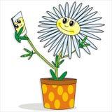 цветок счастливый Стоковое Фото