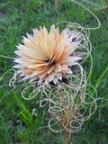 Цветок сделанный от древесины Стоковые Изображения