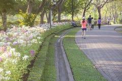 Цветок с запачканными идущими людьми Стоковое Фото