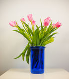 Цветок тюльпанов Стоковое Фото