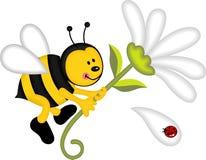Цветок удерживания летания пчелы Стоковое Фото