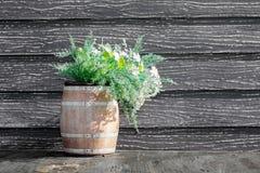 Цветок украшения винзавода Стоковое Фото