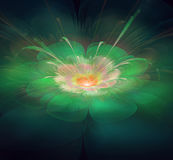 Цветок фрактали Стоковая Фотография RF