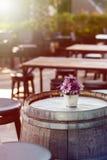 Цветок хризантемы на столе стоковое фото