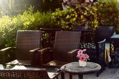 Цветок хризантемы на столе стоковая фотография