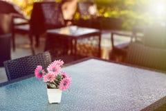 Цветок хризантемы на столе Стоковое фото RF
