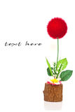 цветок шарика Стоковое Изображение