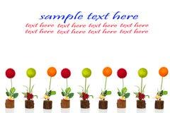 цветок шарика Стоковая Фотография RF