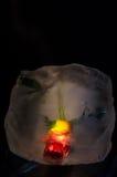 Цветок льда Стоковые Изображения