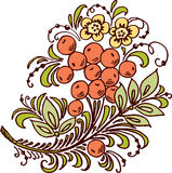 цветок ягод Стоковые Фото