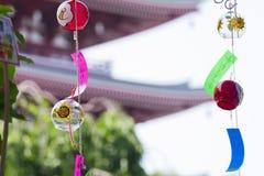Цветок японского фонарика Стоковое Изображение