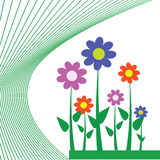 Цветок для предпосылки Стоковые Изображения RF